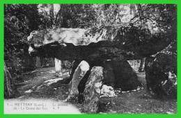 """-4- METTRAY (I.-et-.L.) Le Dolmen Dit """"la Grotte Des Fées"""" (recto Verso) - Dolmen & Menhirs"""