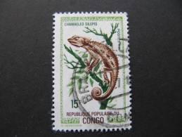 1240  Kameleon Caméléon Chamäleon Chameleon Camaleonte - Reptiles & Batraciens