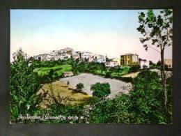 TOSCANA -GROSSETO -BOCCHEGGIANO -F.G. LOTTO N°246 - Grosseto