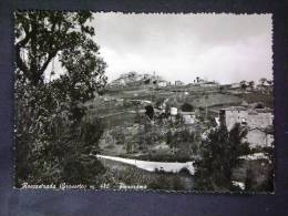 TOSCANA -GROSSETO -ROCCASTRADA -F.G. LOTTO N°246 - Grosseto