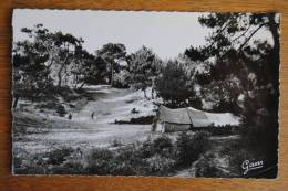 STELLA PLAGE Cucq - Coin Des Campeurs En Forêt - France