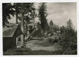 GERMANY - AK 146741 Herrenalb / Schwarzwald - Bernstein - Hochschwarzwald