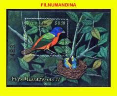 EL SALVADOR 2007 FAUNA FAUNE OISEAUX VOGEL BIRDS FEUILLET SOUVENIR SHEET,BLOCK NEUF** MNH POSTFRISCH - Oiseaux