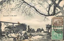 REF 48- Egypte -sacquieh In The Field - Carte Bon Etat - - Egypt
