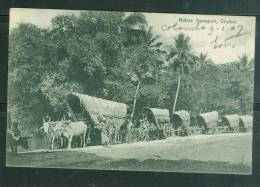 Native Transport , Ceylon , Cpa Voyagé En 1907 - Ax3306 - Sri Lanka (Ceylon)
