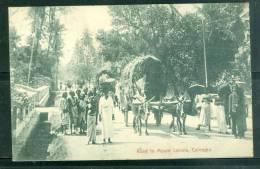 Road To Mount Lavinia , Colombo  , Cpa Voyagé En 1907 - Ax3308 - Sri Lanka (Ceylon)