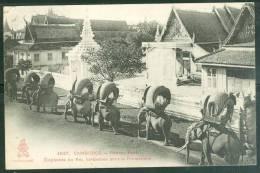 Cambodge - Phnom-Penh - Elephant Du Roi Harnachés Pour La Promenade   - Ax3315 - Cambodia