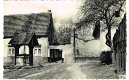 "Postkaart / Carte Postale ""Sint Truiden / Saint Trond - Begijnhof / Béguinage"" - Sint-Truiden"