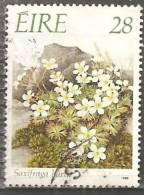 Irlanda 1988 Usato - Mi. 655 - 1949-... Repubblica D'Irlanda