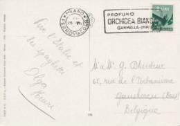 Flamme Publicitaire Milan - Parfum Orchidée Blanche - Orchidées