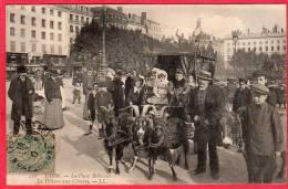 CPA 69 LYON La Place Bellecour La Voiture Aux Chèvres  ( D100) - Sonstige