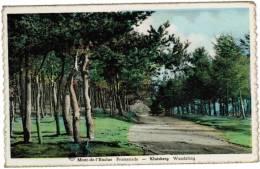 Kluisberg, Mont De L´Enclus, Promenade, Wandeling (pk9136) - Mont-de-l'Enclus