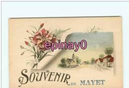 Br -03 - LE MAYET DE MONTAGNE - Souvenir De ... - Oeillets - - France