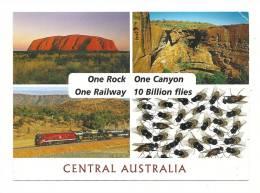 Cp, Australie, Central Australia, Multi-Vues, Voyagée 2012 - Australien