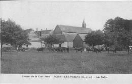 CPA - 28 - Eur Et Loir - Boissy-lès-Perche - Couvent Cour Pétral - La Prairie - Animée - État TB - France