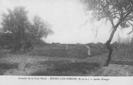 CPA - 28 - Eur Et Loir - Boissy-lès-Perche - Couvent Cour Pétral - Jardin Potager - Animée - État TB - France