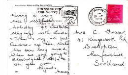 1973  SLOGAN - CHESSINGTON ZOO, SURREY - Postmark Collection