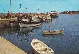 21818 Port Navalo Le Port -4 Artaud Gabier QD -bateau Peche VA279815 -va 201015 Va 2801.. - France
