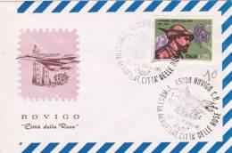 Rovigo 1972 - Mostra Aerofilatelica - Avion Airplane - Affrancature Meccaniche Rosse (EMA)