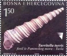 BH 2008-531 FOSSIL-SHELL FROM TUZLA, BOSNA AND HERZEGOVINA, 1v, MNH - Fossili