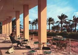 HOMS ,  Leptis Magna Hotel  * - Libia