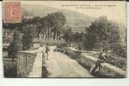 LA  SALVETAT  PIC DE LA VEGENDE  TRES BON ETAT - La Salvetat