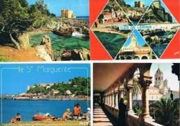240213H Lot De 43 CPM Couleur Vierges Pour Courrier : Dep.06 (Alpes Maritimes) : Iles De Lérins Cannes - Cartes Postales