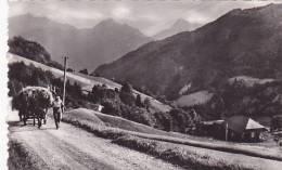 Cpa-74-montmin-- Hameau De La Perrière-animée Avec Attelage D'ane-edi Hotel Du Chardon Bleu N°12 - Autres Communes