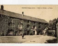 45- CHATILLON-COLIGNY- Chateau De Mivoisin-Le Moulin-animée - Chatillon Coligny
