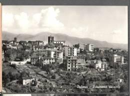 1961 PALIANO PANORAMA FG V 2 SCANS - Italien