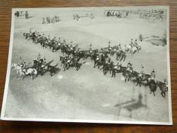 PAARDEN ( Horse / Cheval ) Dressuur / Show ( De Carrousel ) ( Zie Foto Voor Details ) !! - Sports