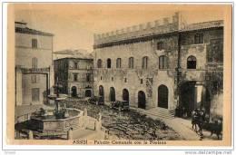 Italy - Perugia - Assisi, Palazzo Comunale Con La Fontana 10s -20's - Perugia