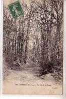 24 CENDRIEUX ( Dordogne ) - Le Bois De La Moutte - Homme Assis Avec Son Chien Dans L'alléeen Hiver - édition O. D. P. - Non Classificati