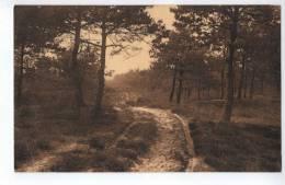 """Oud-Turnhout : """"LIERMAN"""" - Oud-Turnhout"""