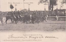 Anvers (Fête Militaire De 1902) - Tandems Du Régiment Du Train - Maniobras