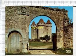 SARZAY - Le Château - France