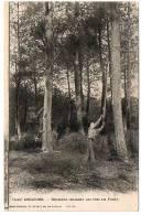 33 - Gironde / ARCACHON -- Résiniers Incisant Les Pins En Forêt. - Arcachon
