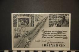 ALLEMAGNE    AK Ibbenbüren Gruss Von Der Sommerrodelbahn - Steinfurt