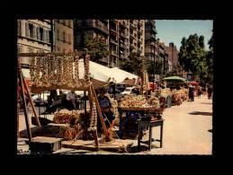 13 Marseille - Foire Aux Aulx De La Saint-Jean - 13.55/172 - Marche Aux Oignons Oignon - Marseille