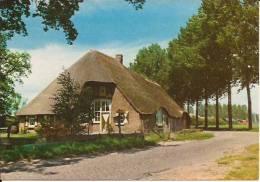 Heeswijk-Dinther Noord -Brabantse Boerderij  1973 - Pays-Bas