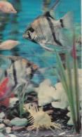 Poisson/Aquarium/carte Visiorelief/ Réf:C0753 - Vissen & Schaaldieren