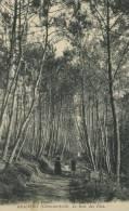 22 - CPA Beauport - Le Bois Des Pins - France