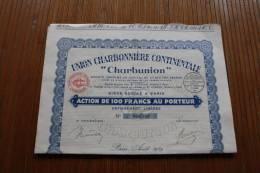 """Paris 6 Août  1929union Charbonnière Continentale """"charbunion"""" Action 100 Fr. Porteur ACTION TITRE (mines ) - Mineral"""