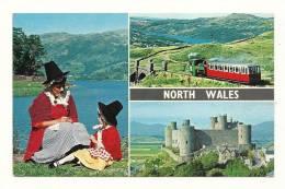 Cp, Pays De Galles, Galles Du Nord, Multi-Vues, Voyagée 1973 - Pays De Galles