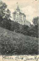 Fev13 388 : Saint-Gallen  -  Scheffelstein - SG St. Gall