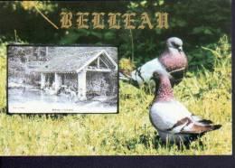 02 - BELLEAU - CHATEAU THIERRY - 26 MARS 1995 - SALON DE LA COLLECTION - CPM - Bourses & Salons De Collections
