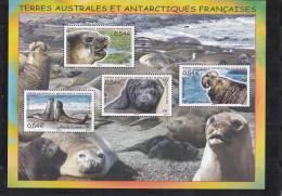 "T.A.A.F  N°19** Bloc Feuillet Neuf Sans Charniere ""Elephant De Mer"" - Blocs-feuillets"