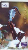 Télécarte Japon OISEAU * VOGEL (3493) PHONECARD JAPAN * TELEFONKARTE * MARTIN PECHEUR * KINGFISHER * BIRD * EISVOGEL - Birds