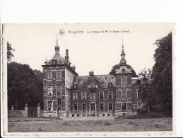 Belgique - Brugelette , Le Château De Mr Le Baron Goffinet - Brugelette