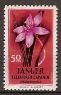Tanger Huerfanos De Telegrafos 36 **  Flor - Marocco Spagnolo